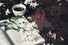 Jasmine Flowers, Open Book And...