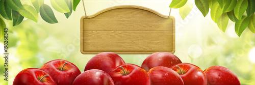Fotografiet Natural fresh apple background
