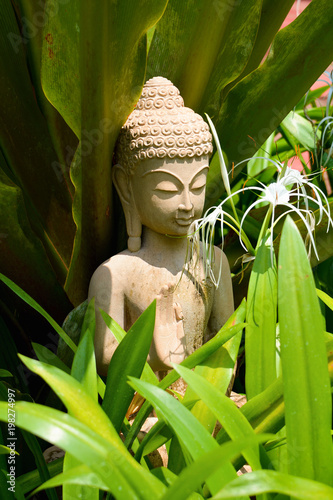 Foto op Canvas Zen Stone statue of Buddha stands in the thickets of tropical flowers North Goa.India