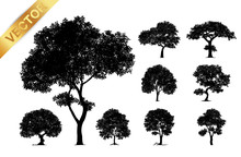 Collection Tree Silhouette Iso...