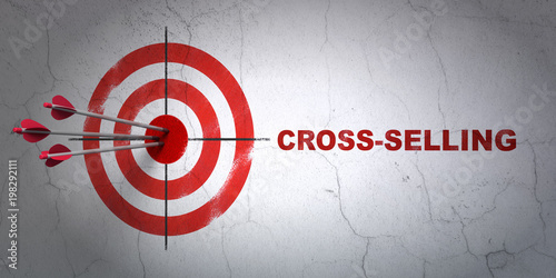 Success business concept: arrows hitting the center of target, Red Cross-Selling Canvas Print