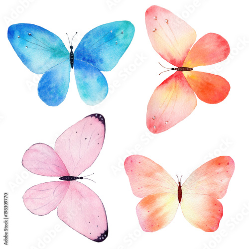 Obraz na plátně  Watercolor hand painted collection of colorful butterflies on white background
