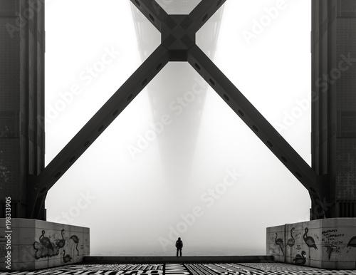 Fotografie, Obraz  X Man