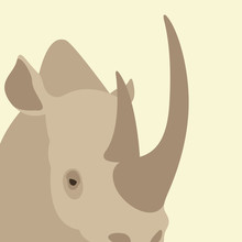 Rhino  Head Face Vector Illustration Flat Style