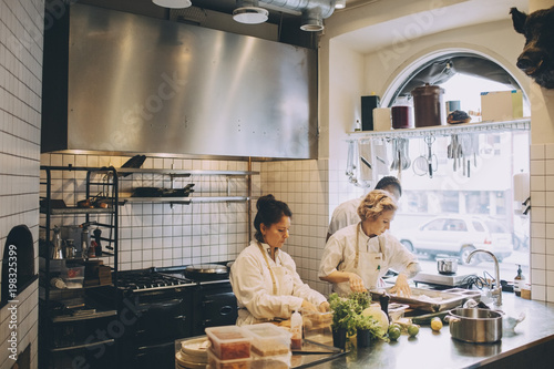 Multi-ethnic chefs preparing food on kitchen counter at restaurant