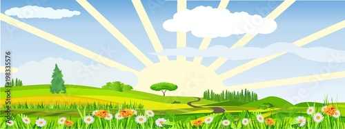 Poster Blauwe hemel Countryside vector illustration, blowing flowers on meadow, rising sun, outdoor concept, nature landscape