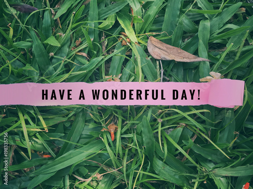 Fotografía  Inspirational greetings - 'Have a wonderful day' written on ripped pink paper with background of green grass