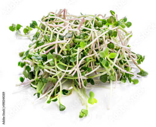 Fotografie, Obraz Young sprout microgreen isolated with shadow. Clipping path.
