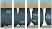 Géologie - Stalagmite Et Stalactite