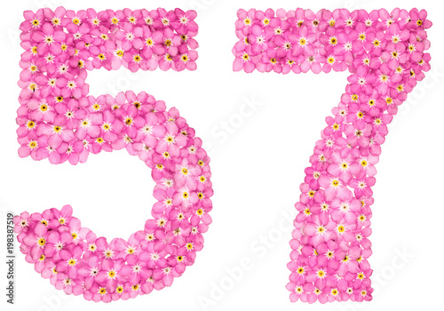 Fotografie, Obraz  Arabic numeral 57, fifty seven, from pink forget-me-not flowers, isolated on whi