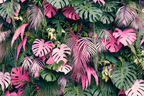 Obraz Tropical trees arranged in full background Or full wall There are leaves in different sizes, different colors, various sizes, many varieties. Another garden layout.as background with copy space. - fototapety do salonu