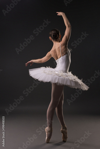 Fotografie, Obraz  Beautiful ballerina dancing gracefully rearview