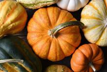 Closeup Shot Of A Group Of Decorative Pumpkins, Squash And Gourds