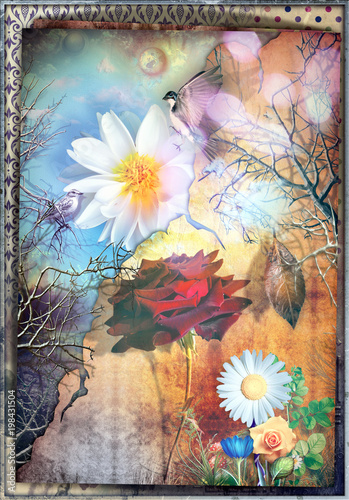 Poster Imagination Fairytales and enchanted countryside with red rose - The secret kingdom.