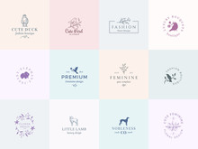 Twelve Abstract Feminine Vector Signs Or Logo Templates Set. Retro Floral Illustration With Classy Typography, Birds, Lamb, Duck, Hound And Elephant. Premium Quality Emblems.