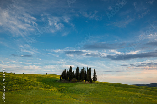 Tuinposter Blauwe jeans Tuscany spring landscape