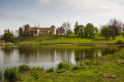 Spoed Foto op Canvas Wit View to ancient castle in Svirzh, Ukraine