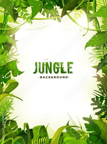 Obraz premium Tło tropikalnych liści dżungli