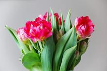 Flower Arrangement With Red Tu...