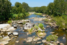 Cattle Creek Near Finch Hatton Gorge In Australia.