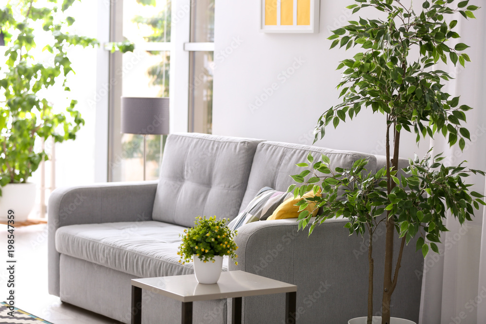 Fototapety, obrazy: Stylish living room interior with comfortable sofa