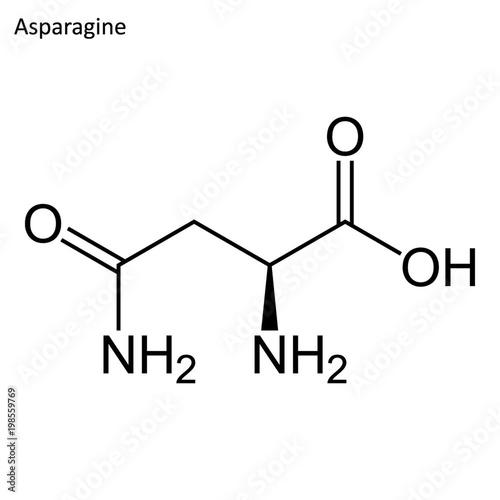 Skeletal formula of Asparagine Canvas Print
