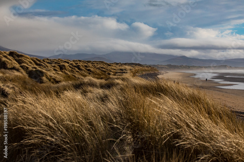 Fotografie, Obraz  Scenic view of grass covered sand dunes on Banna beach in county Kerry, Ireland