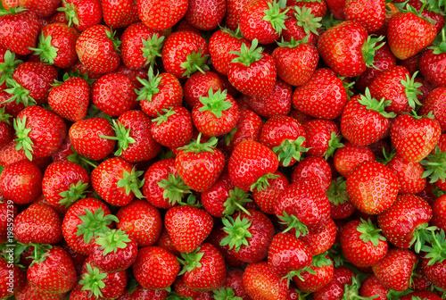 Fotografía  Strawberries background. Strawberry. Food background.