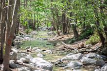 Eaton Canyon Stream Running Al...