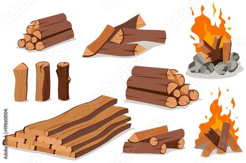 Fire wood and campfire Fototapeta