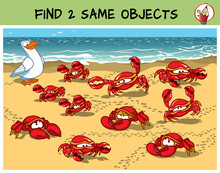 Find Two The Same Crabs In The...