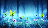 Fototapeta Child room - Fairy Butterflies In Mystic Forest