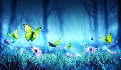 Fairy Butterflies In Mystic...