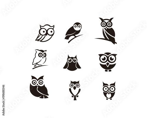 Door stickers Owls cartoon owl animal bird