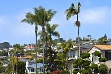 Residential Houses On A Hillsi...