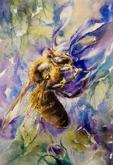Close up of honey bee on lo...