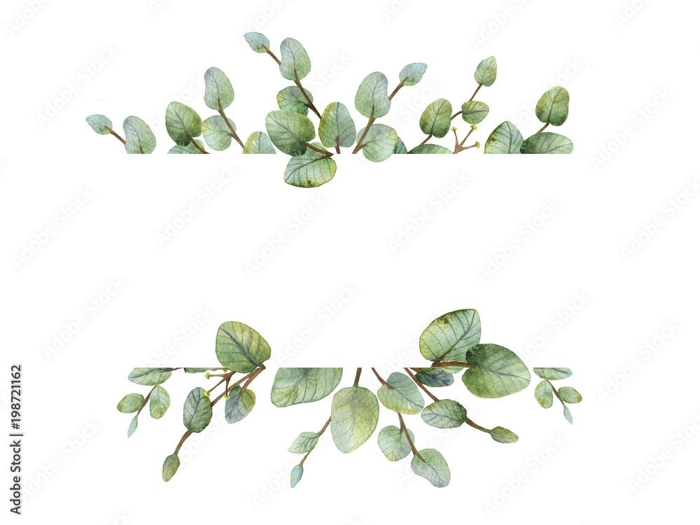Fototapeta Watercolour green eucalyptus banner on white background.