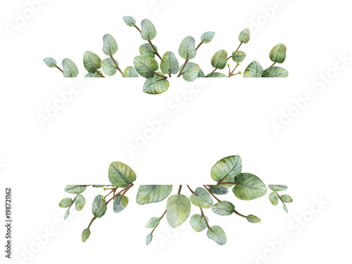 Poster Fleur Watercolour green eucalyptus banner on white background.