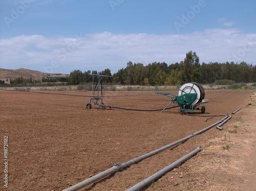 Irrigazione per aspersione Wallpaper Mural