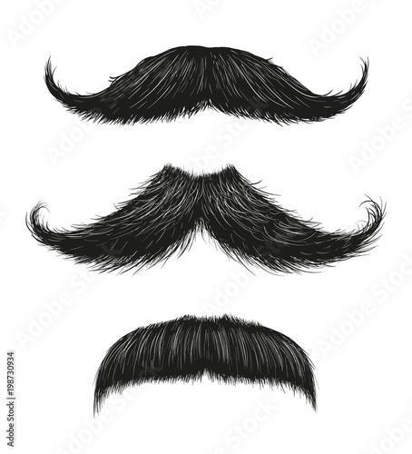 Three Mustache Set Wallpaper Mural