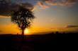 Sunset Coburg