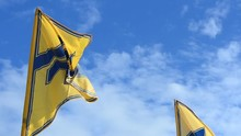 """Flag Of The Regiment """"Azov""""."""