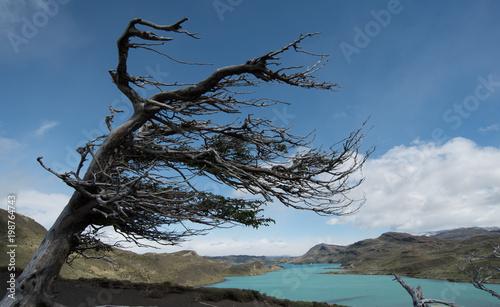 Obraz na plátne extreme wind