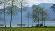 Springtime in Switzerland - Zuggersee Cham Villette park