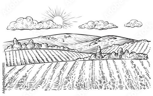 Poster Blanc Rural landscape, vector vintage hand drawn illustration.