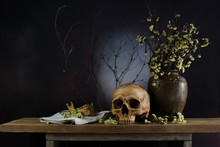 Skull And Dried Flowers In Jar With Dried Branch On The Wooden Plank
