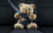 Teddy Bear Is Sitting In A Car...