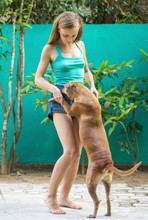 Girl Dancing With A Dog