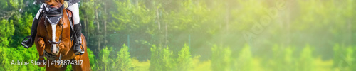 Horizontal photo banner for website header design. Sorrel horse and rider in uniform during showjumping competition. Blur green trees and sun rays as background. Copy space for your text.