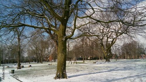 Photo winter park